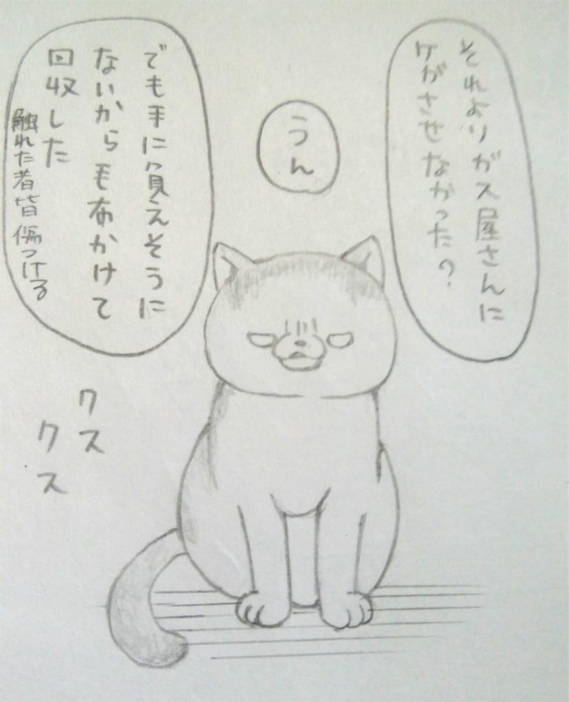 f:id:maricats:20190707093348j:image