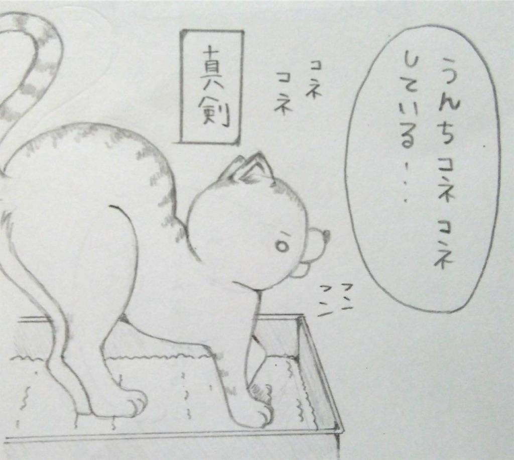 f:id:maricats:20190708181511j:image