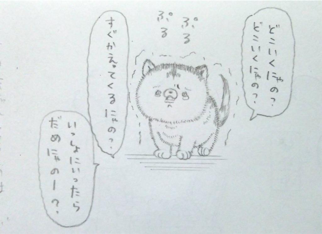 f:id:maricats:20190708181517j:image