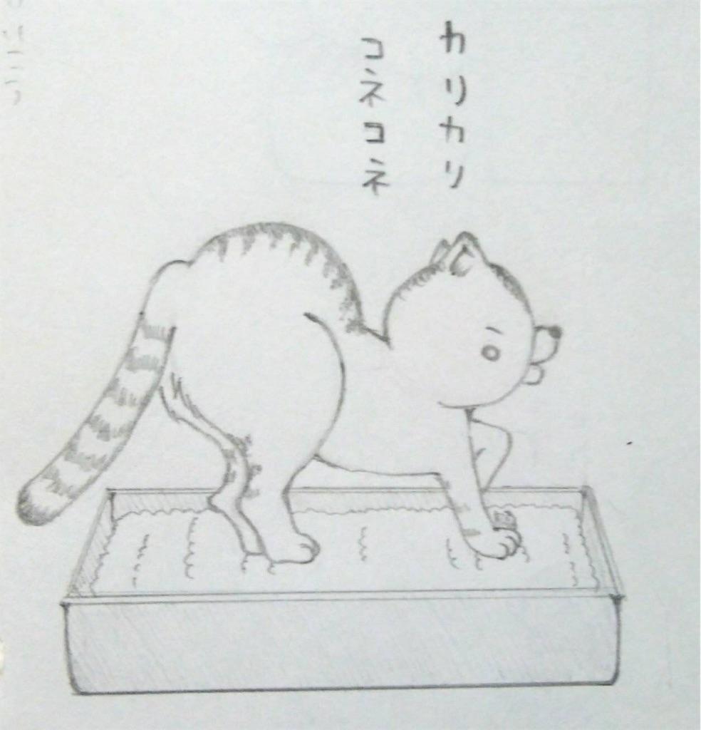 f:id:maricats:20190708181520j:image