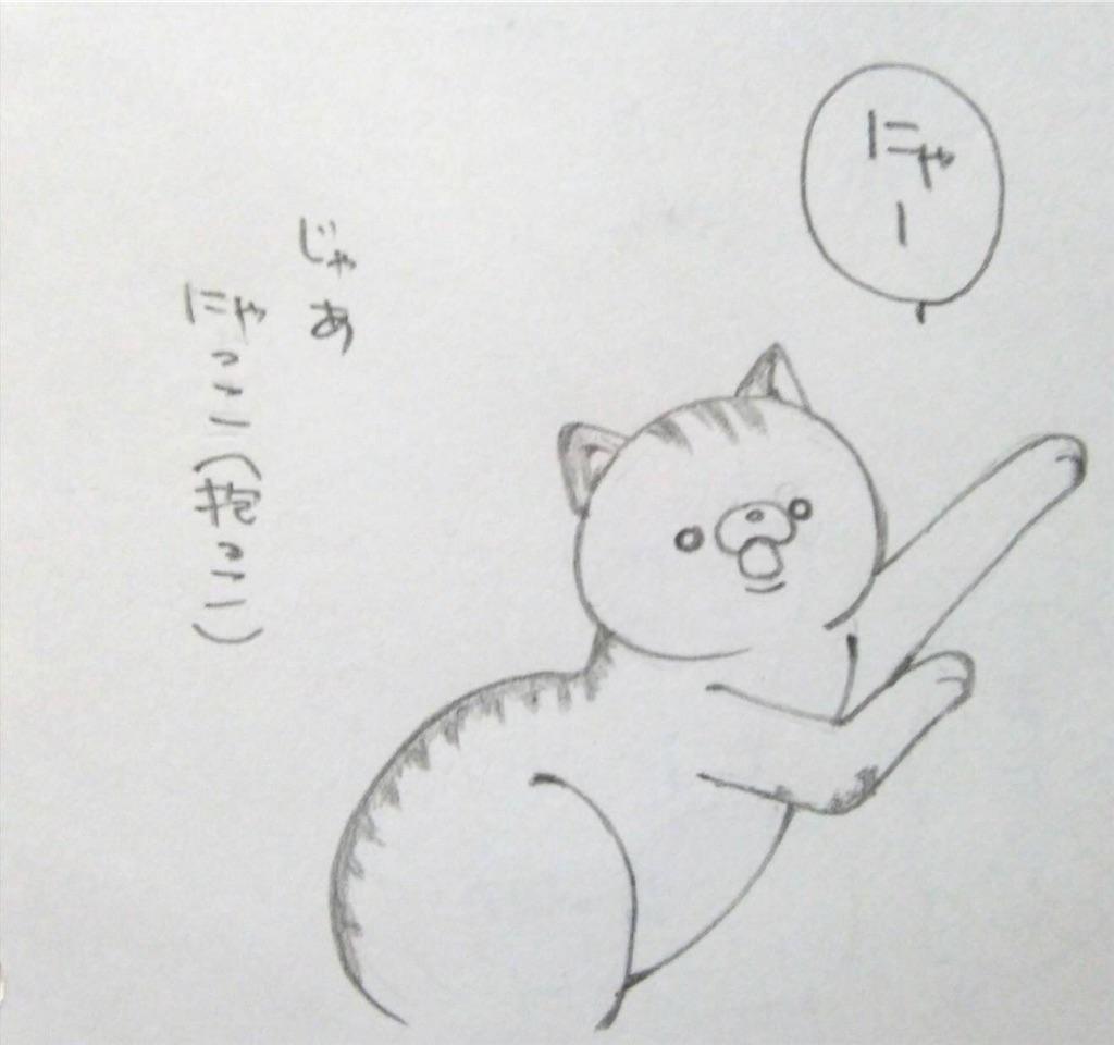 f:id:maricats:20190708181529j:image