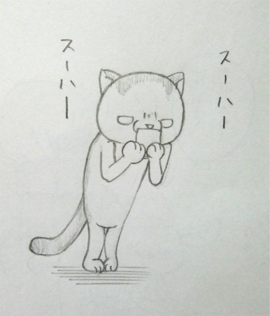 f:id:maricats:20190711200218j:image