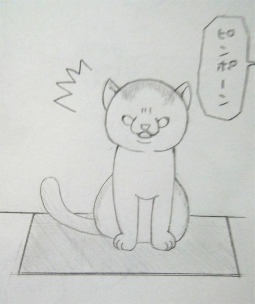 f:id:maricats:20190715003855j:image