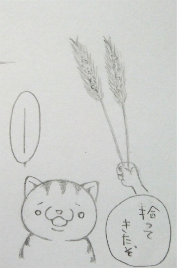 f:id:maricats:20190716224258j:image