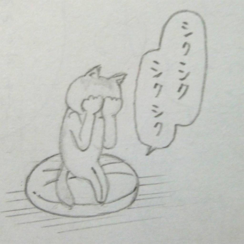 f:id:maricats:20190725170652j:image