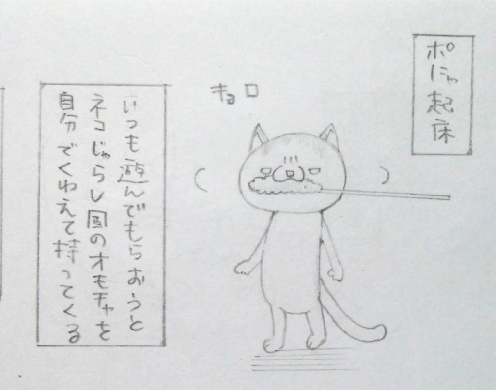 f:id:maricats:20190804181102j:image