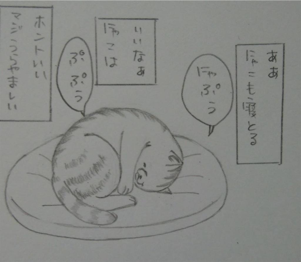 f:id:maricats:20190811092436j:image