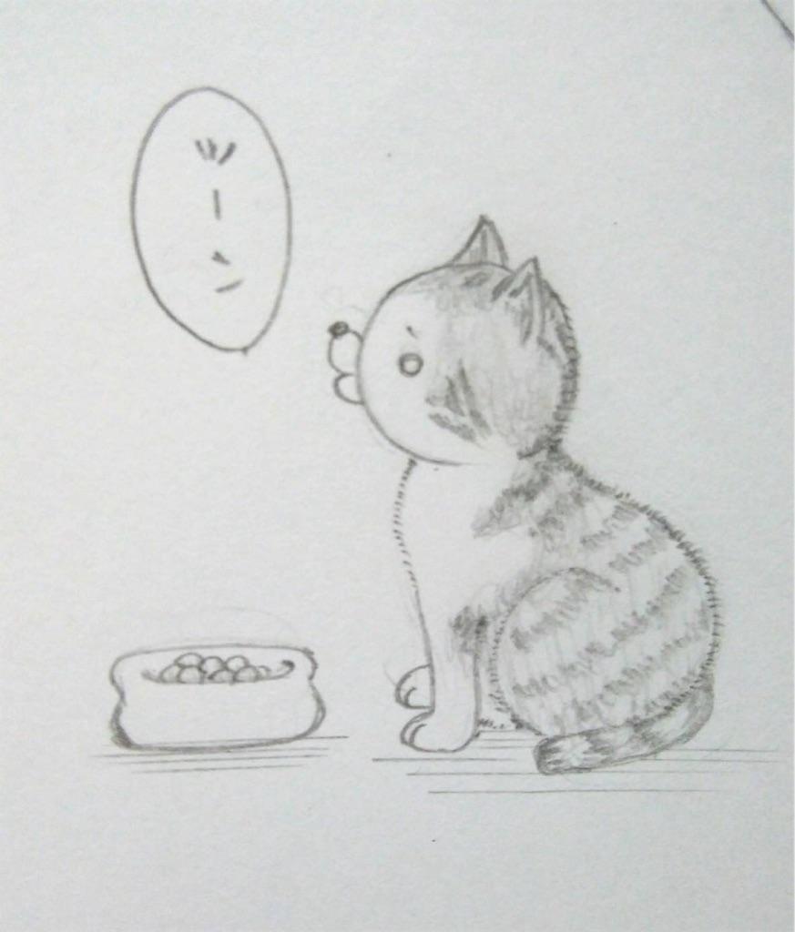f:id:maricats:20190817091208j:image