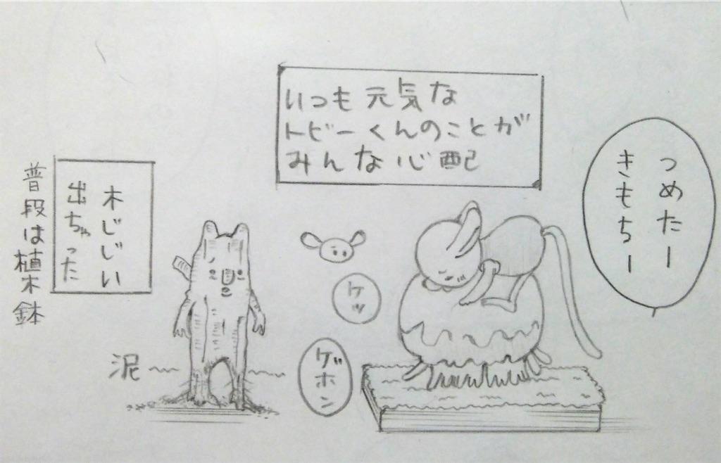 f:id:maricats:20190917185103j:image