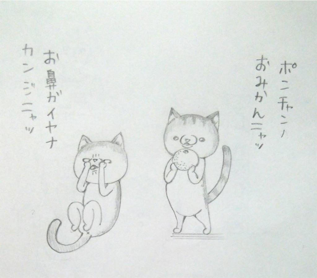 f:id:maricats:20191010224530j:image