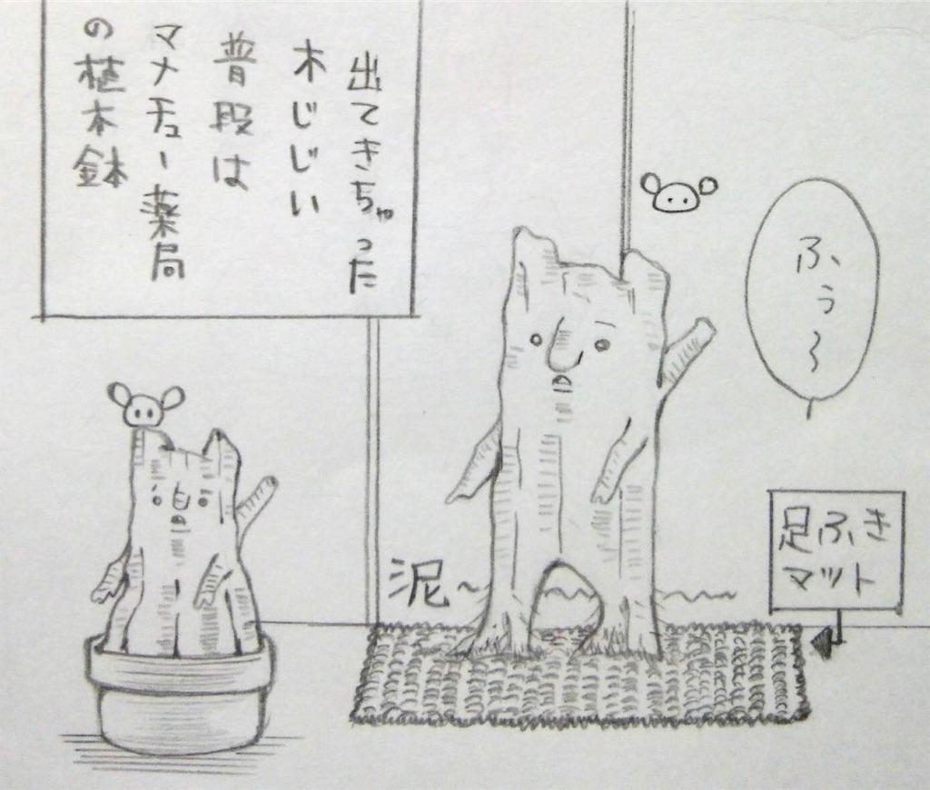 f:id:maricats:20191202190838j:image