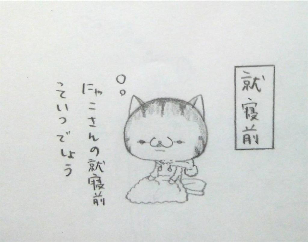 f:id:maricats:20200104202542j:image