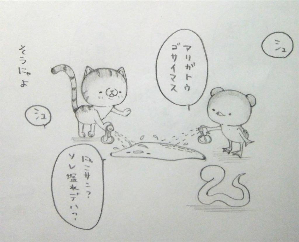 f:id:maricats:20200113194710j:image