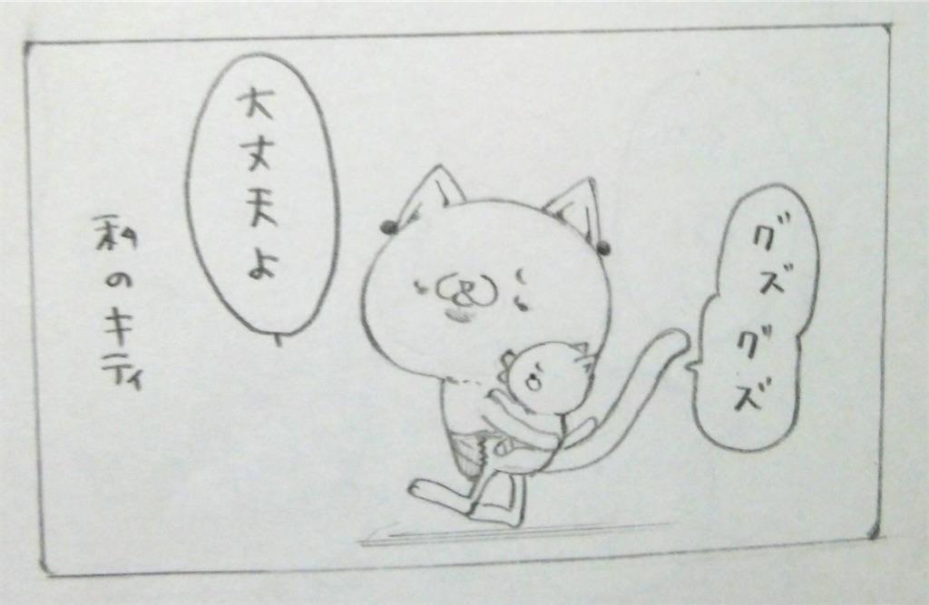 f:id:maricats:20200114210924j:image