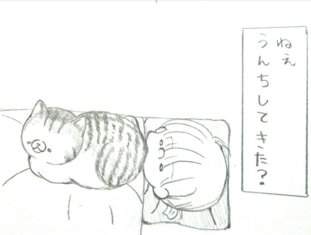 f:id:maricats:20200116222007j:image