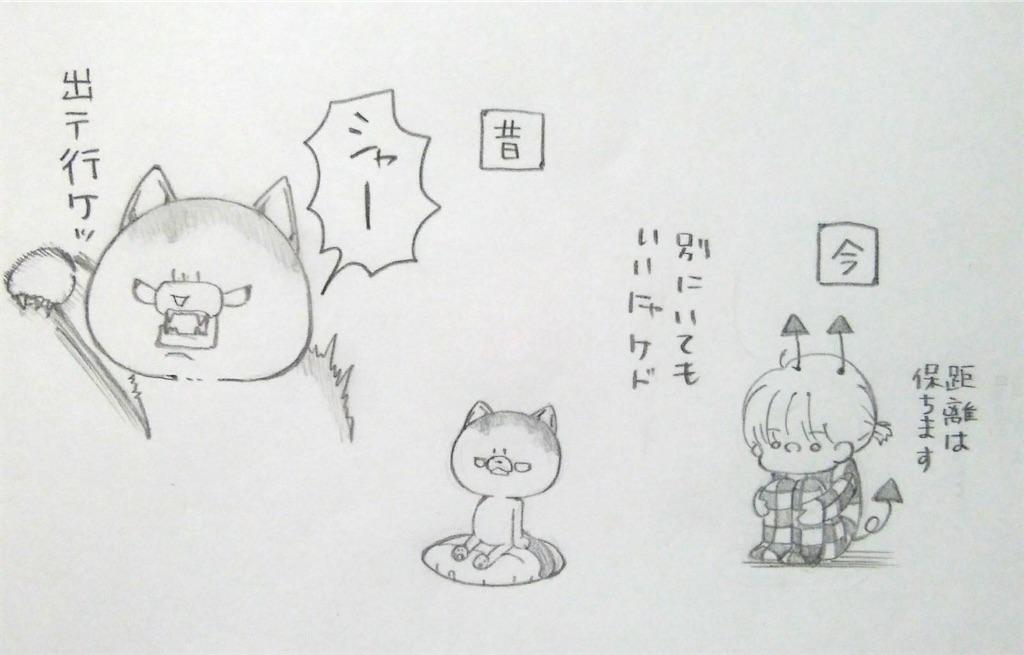 f:id:maricats:20200119201045j:image