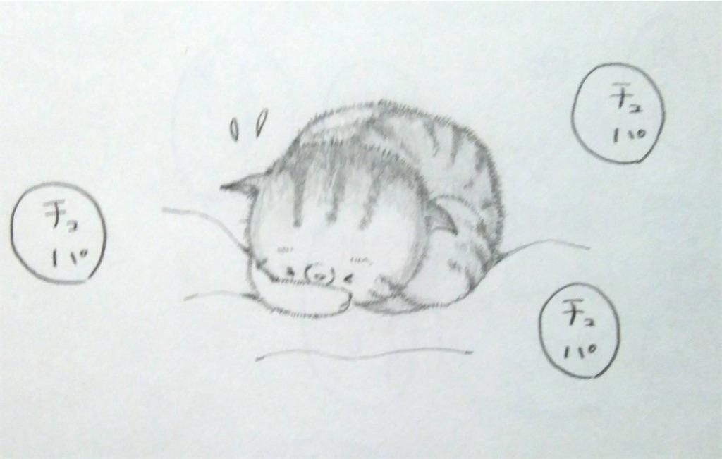 f:id:maricats:20200127190927j:image