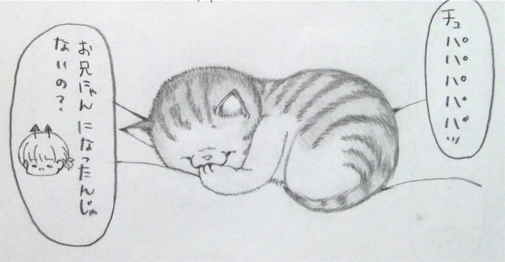 f:id:maricats:20200127190941j:image