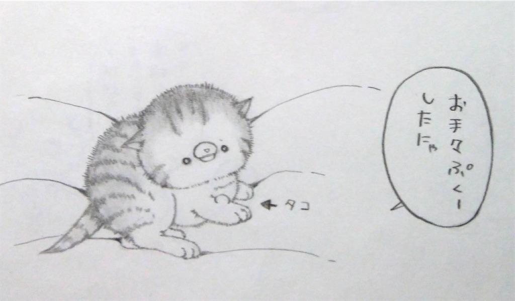 f:id:maricats:20200127191229j:image