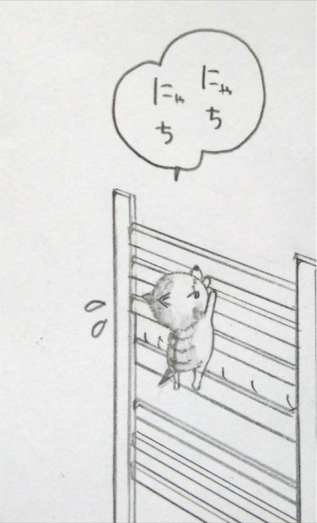 f:id:maricats:20200130182148j:image
