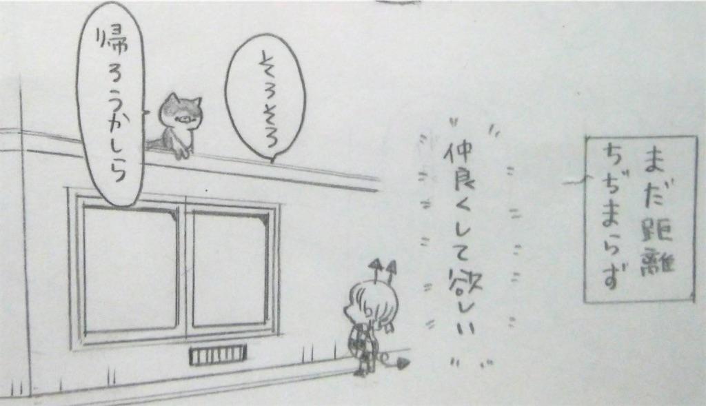 f:id:maricats:20200202192423j:image