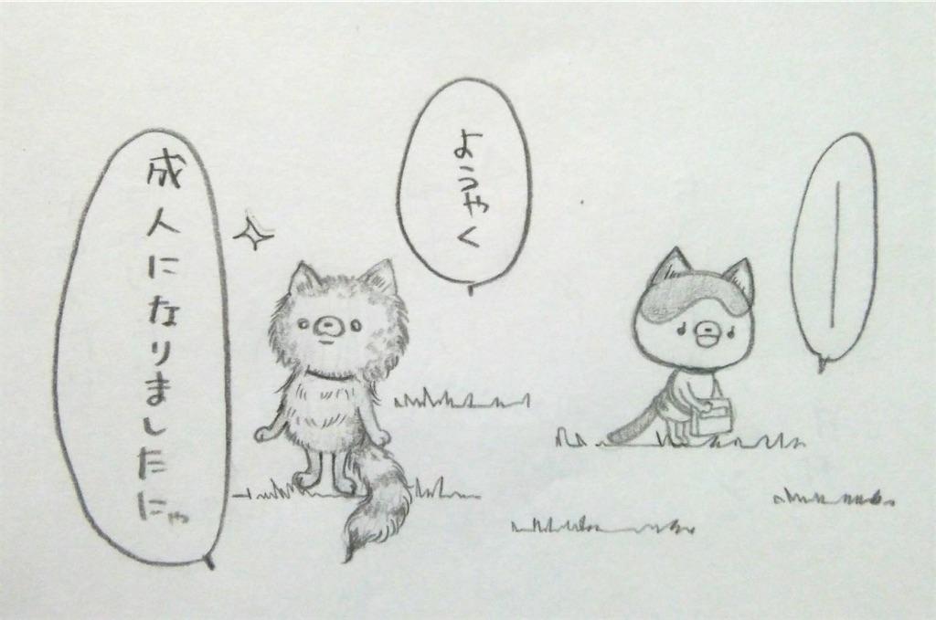 f:id:maricats:20200208151845j:image