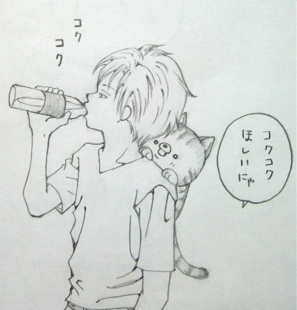 f:id:maricats:20200213193214j:image