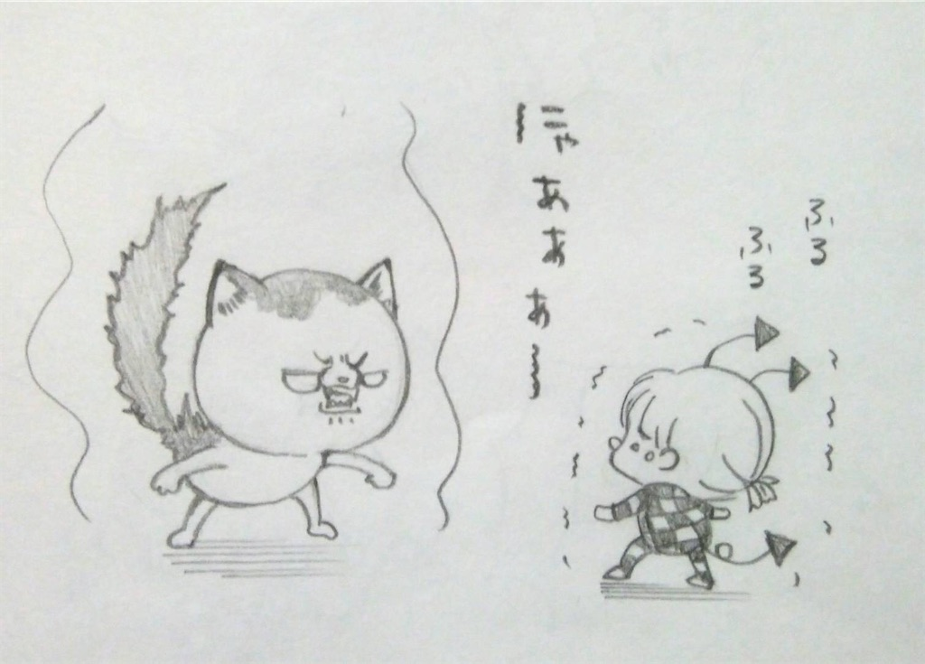 f:id:maricats:20200226205917j:image