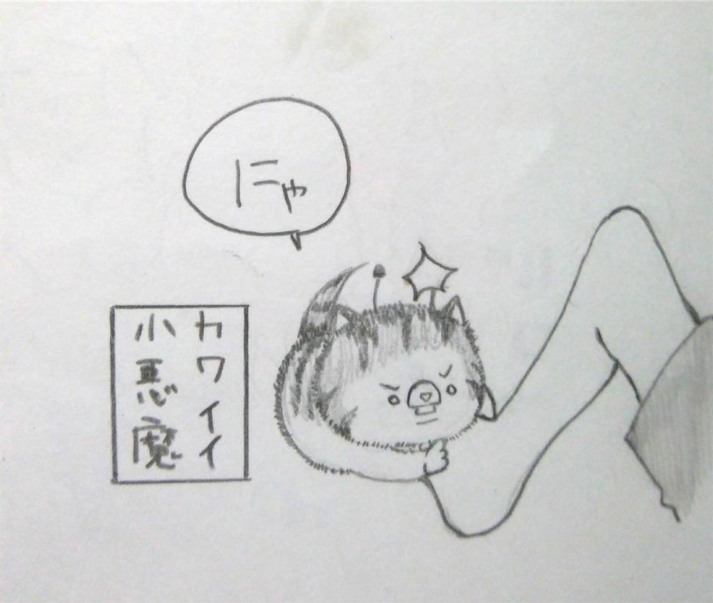 f:id:maricats:20200226205929j:image