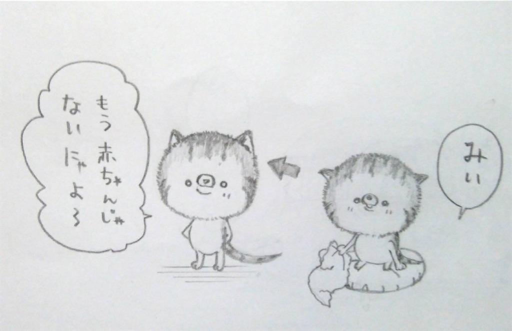 f:id:maricats:20200226205937j:image