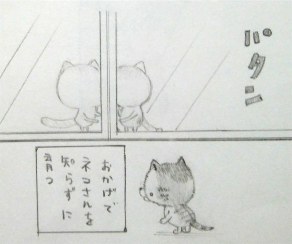 f:id:maricats:20200227195859j:image
