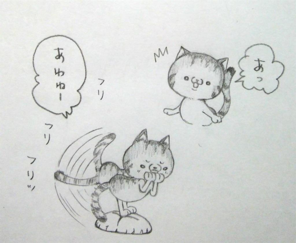 f:id:maricats:20200304212157j:image