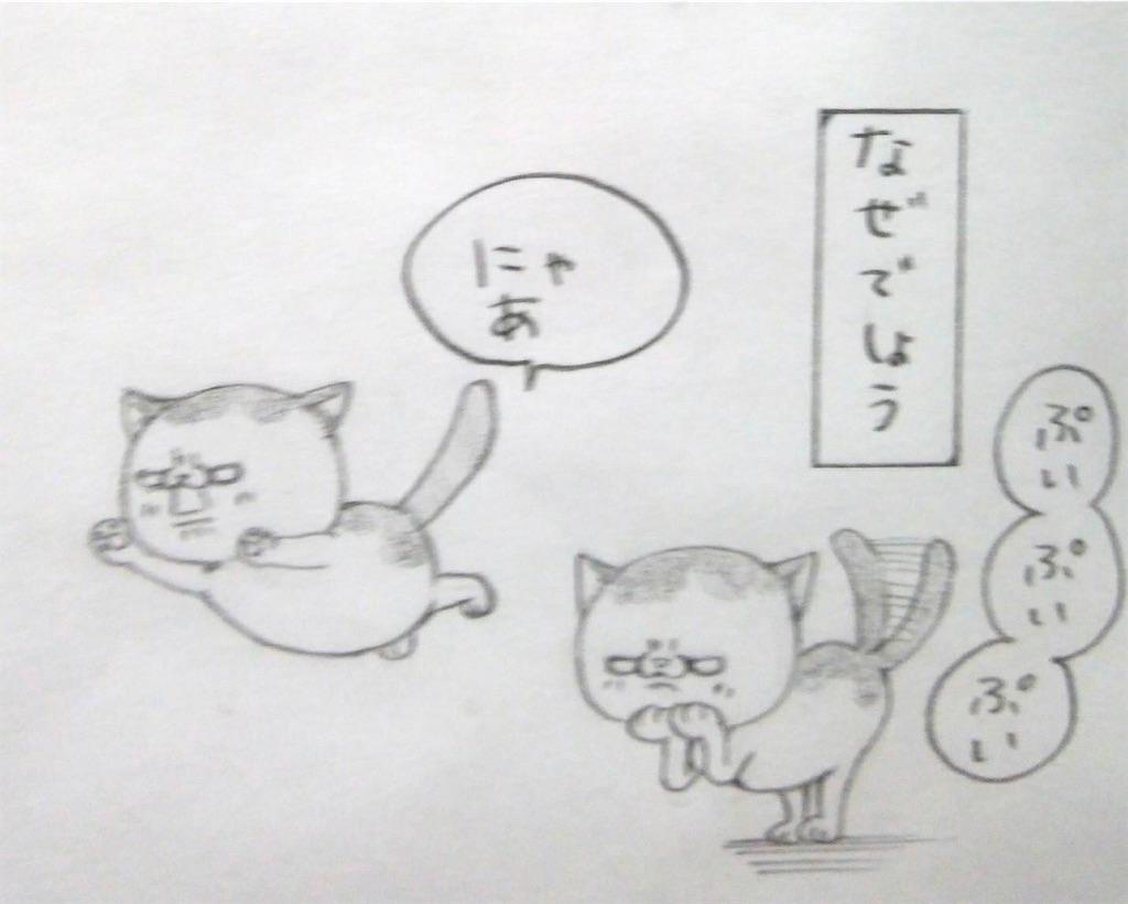f:id:maricats:20200327195527j:image