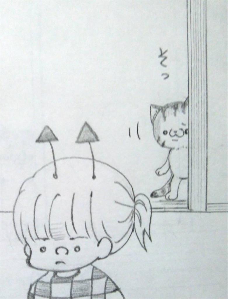 f:id:maricats:20200328190727j:image