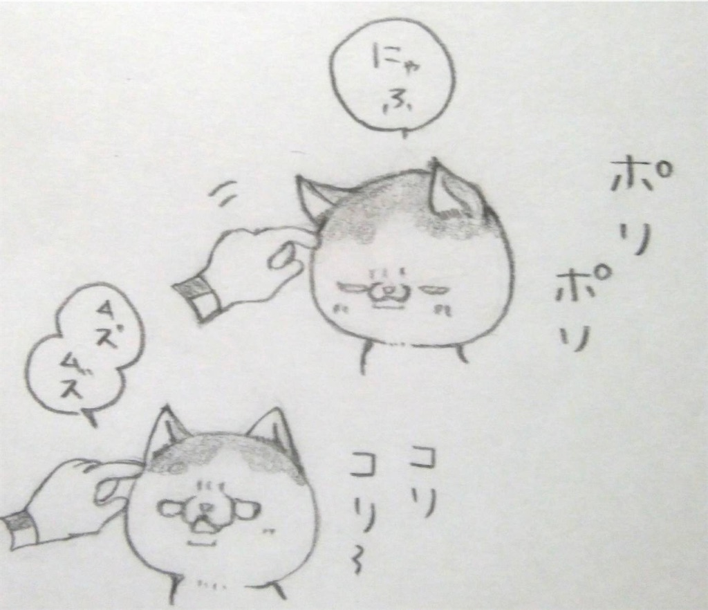 f:id:maricats:20200411195823j:image