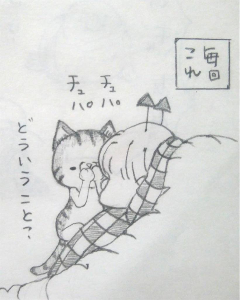 f:id:maricats:20200412181517j:image