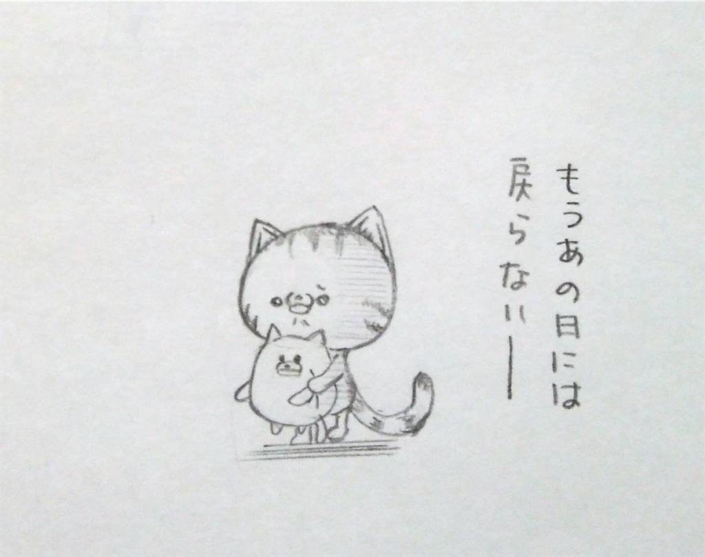 f:id:maricats:20200505113318j:image