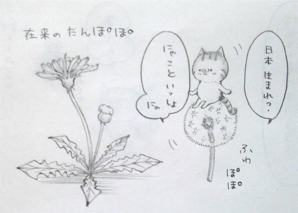 f:id:maricats:20200507202055j:image