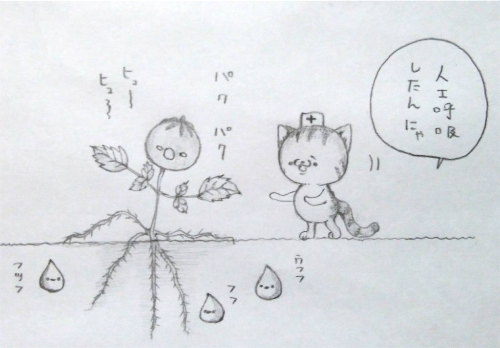 f:id:maricats:20200507202058j:image