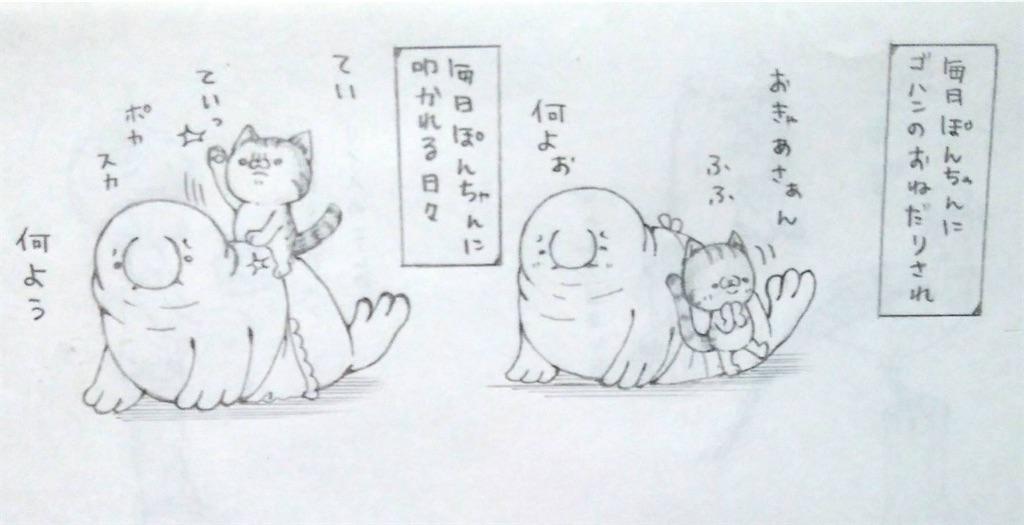 f:id:maricats:20200523204950j:image