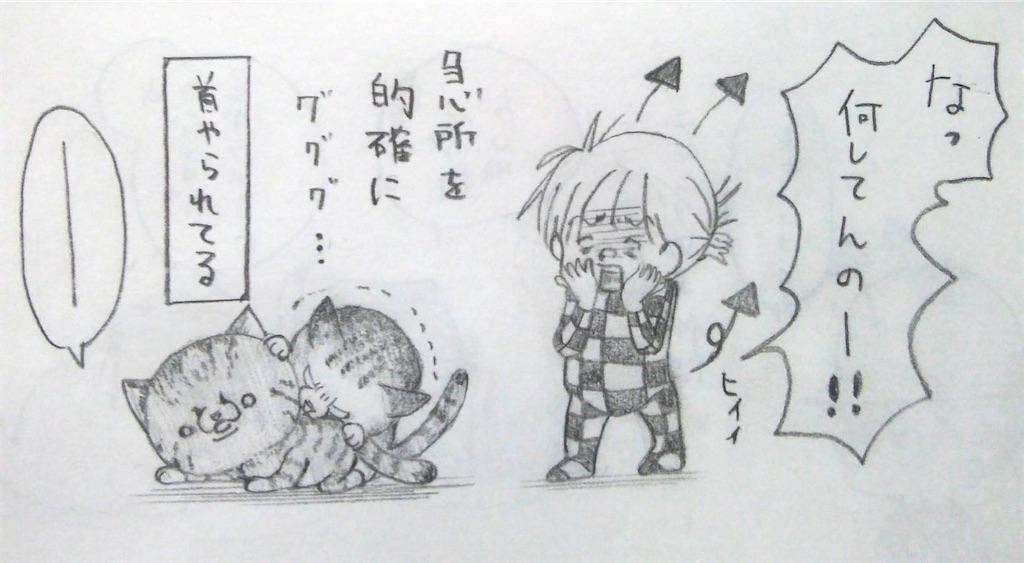 f:id:maricats:20200525193945j:image