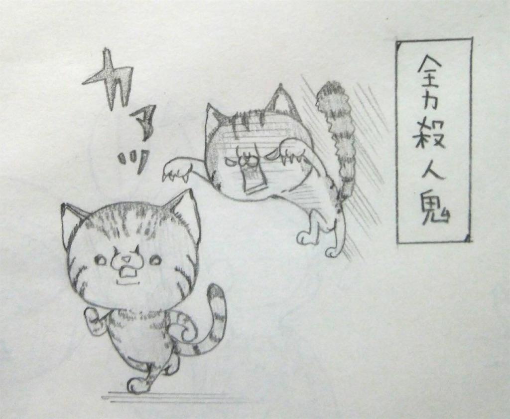 f:id:maricats:20200525194000j:image