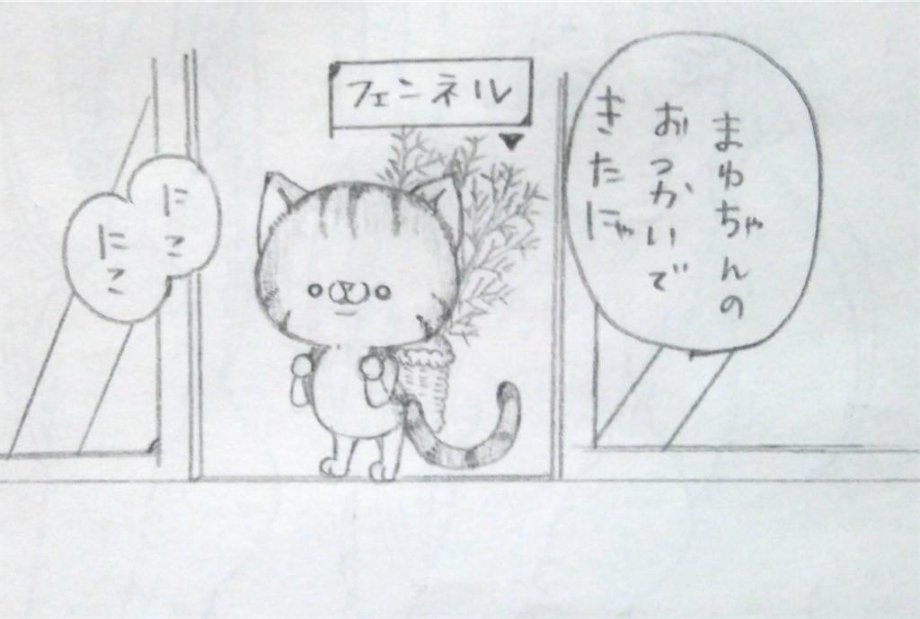 f:id:maricats:20200704155438j:image
