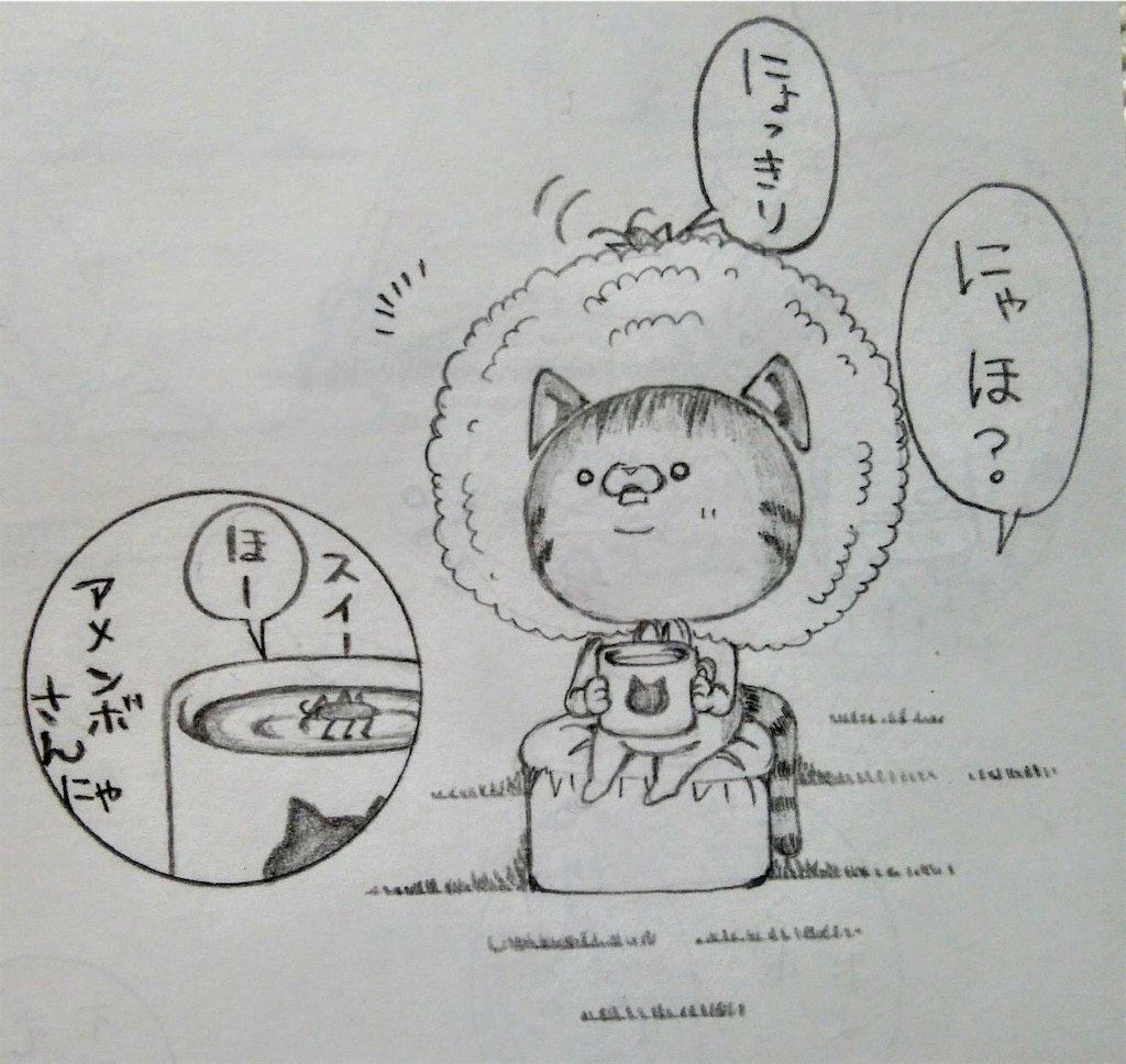 f:id:maricats:20200711222002j:image