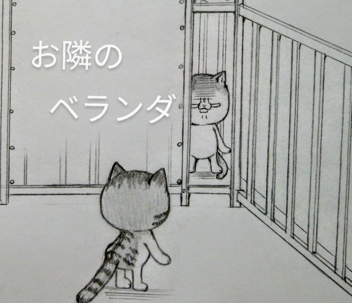 f:id:maricats:20200724212709j:plain