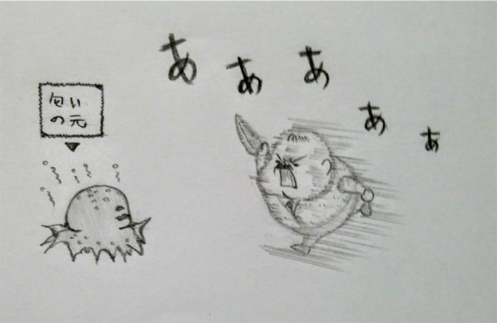 f:id:maricats:20200730191239j:image