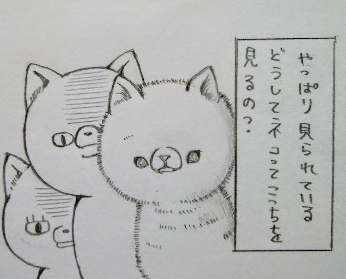 f:id:maricats:20200816151620j:plain