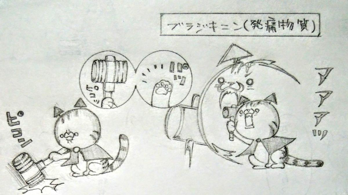 f:id:maricats:20200903011731j:plain