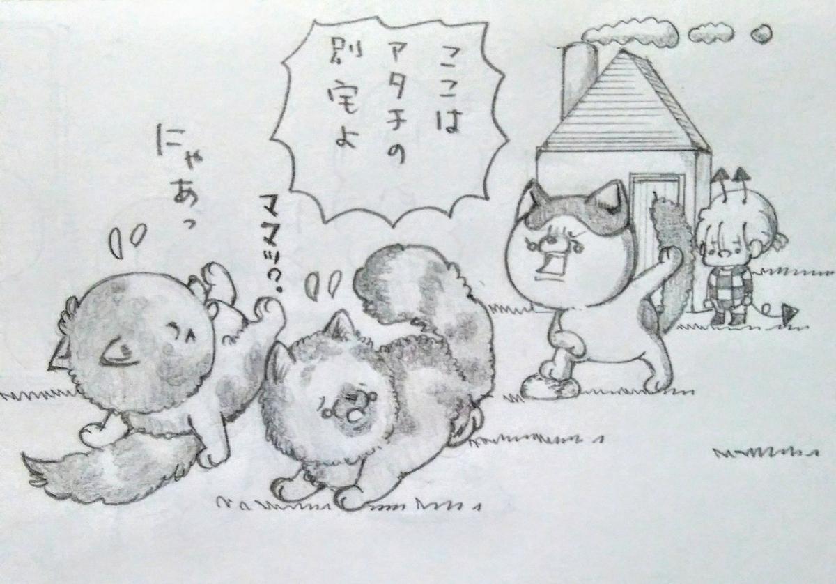 f:id:maricats:20200930201420j:plain