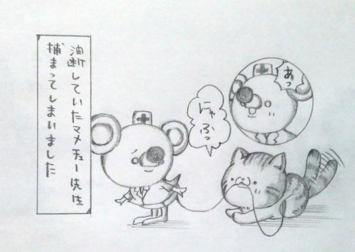 f:id:maricats:20210101194616j:plain